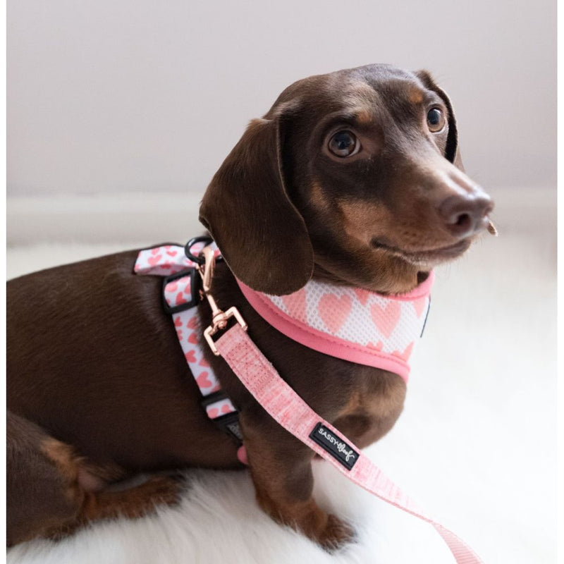 Sassy Woof Dolce Rose Leash
