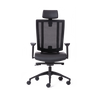 NETONE® HIGH BACK ERGONOMIC OFFICE CHAIR. - ergotherapy-solutions