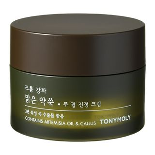 [TONYMOLY] From Ganghwa Pure Artemisia Two Layering Calming Cream - 64ml - kmade cosméticos coreanos