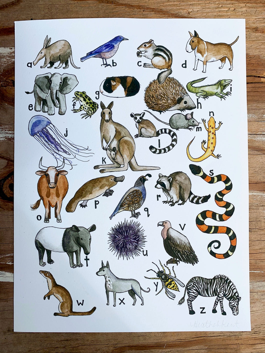 Animal Alphabet Fine Art Print, Print of Original Watercolor Painting  9x12in