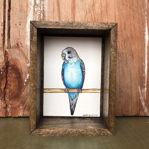 Blue Budgie Parakeet, Box Painting - Original Watercolor Painting in a Box, Shadowbox, Parakeet Illustration