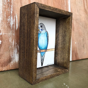 SALE Blue Budgie Parakeet, Box Painting - Original Watercolor Painting in a Box, Shadowbox, Parakeet Illustration