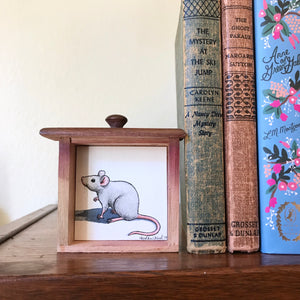 SALE Set of 3 Woodland Animals Box Paintings - Gray Mouse, Skunk & Raccoon