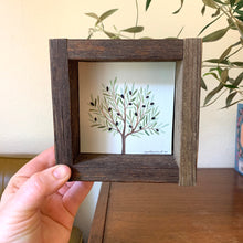 Load image into Gallery viewer, Olive Tree - Original Watercolor Box Painting, Trees Collection