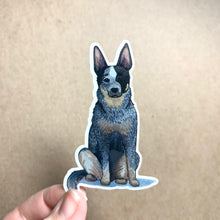 Load image into Gallery viewer, Queensland Heeler Dog Vinyl Stickers, 3 inch, Doggos Sticker, Blue Heeler / Australian Cattle Dog
