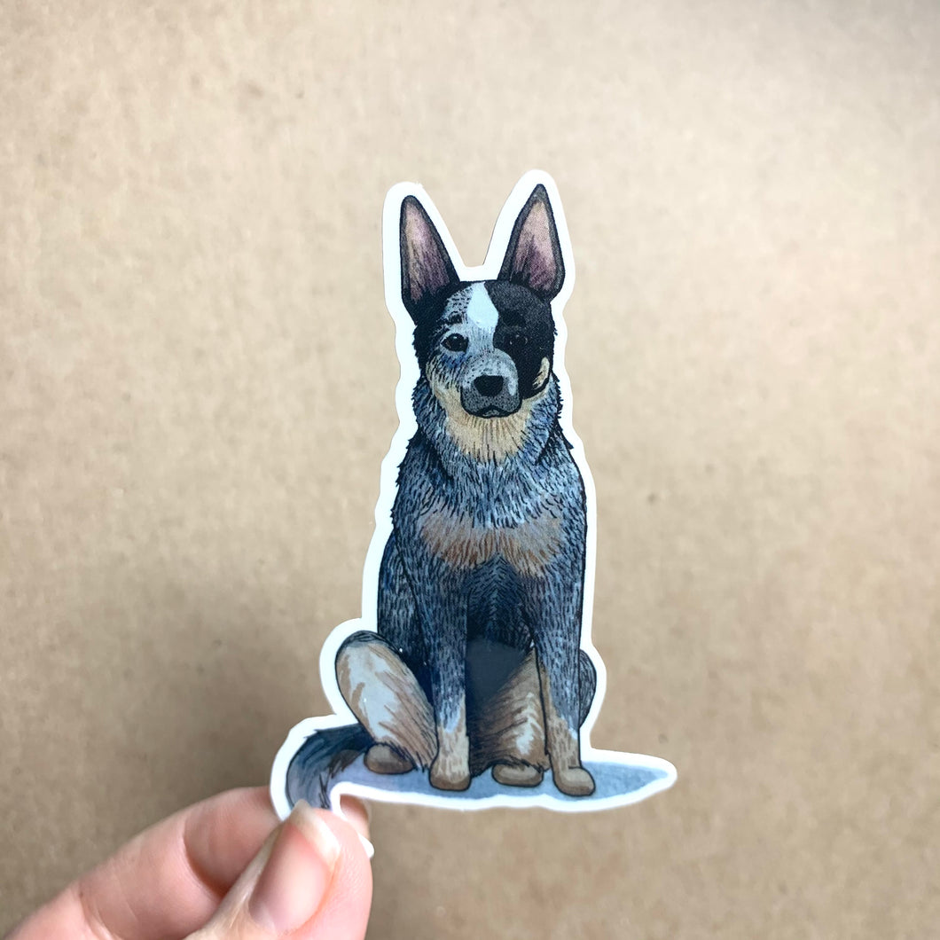 Queensland Heeler Dog Vinyl Stickers, 3 inch, Doggos Sticker, Blue Heeler / Australian Cattle Dog