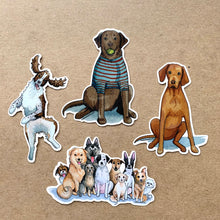 Load image into Gallery viewer, English Springer Spaniel Dog Vinyl Stickers, 3 inch, Doggos Sticker, FREE SHIPPING