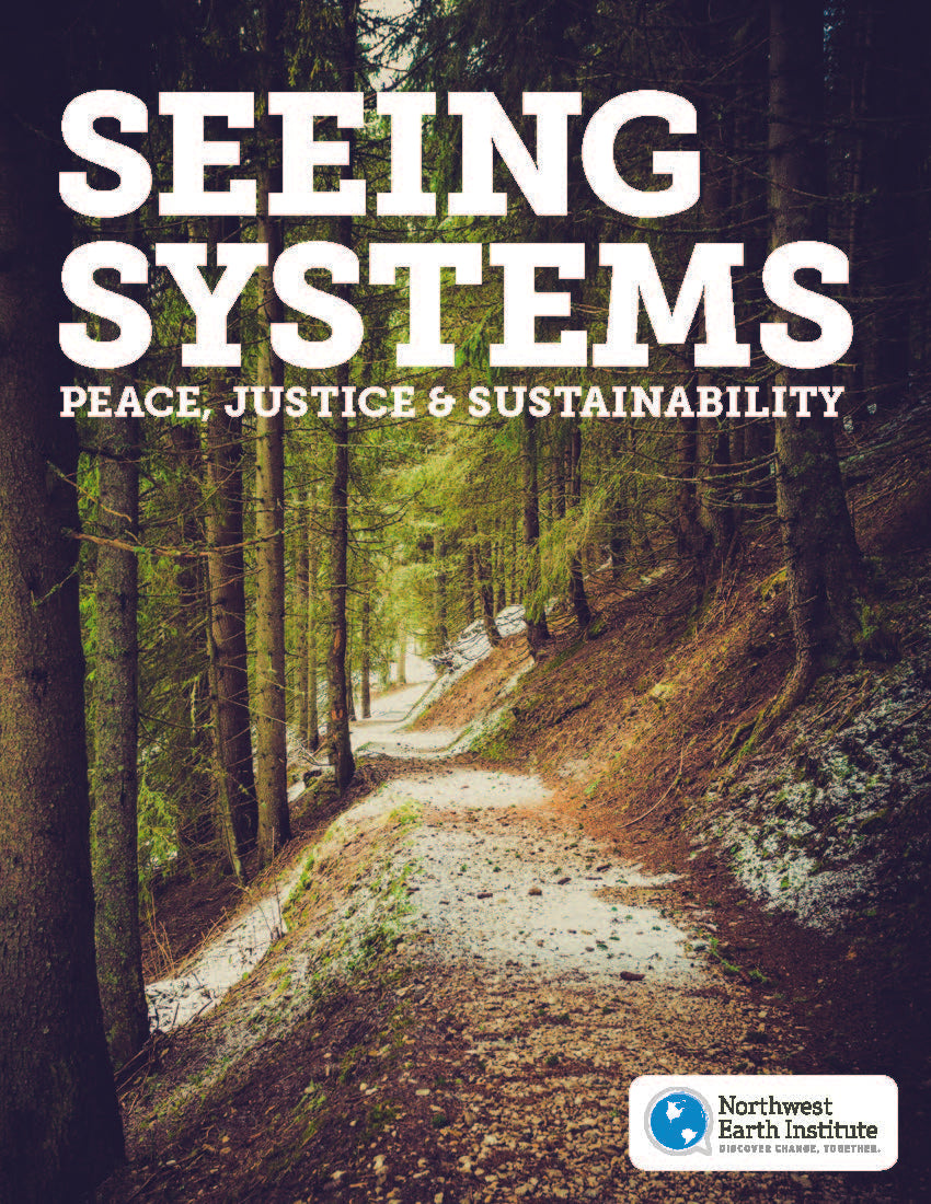 Seeing Systems: Peace, Justice, and Sustainability (2014)