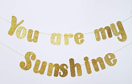 You are my Sunshine Banner