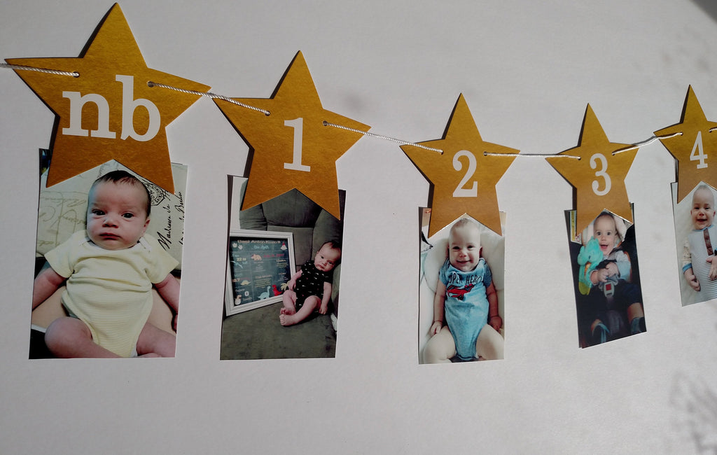 Twinkle Twinkle Little Star Monthly Banner for First Birthday - Garland, Cake Smash, 1st bday