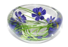 Blue Cosmos bowl