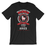 Aries Tee (4 Colors) - stuntees