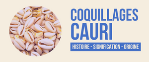 signification cauri coquillage