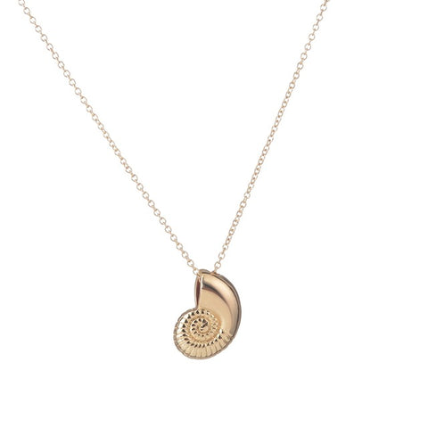 Collier Marin <br/>  Ammonite
