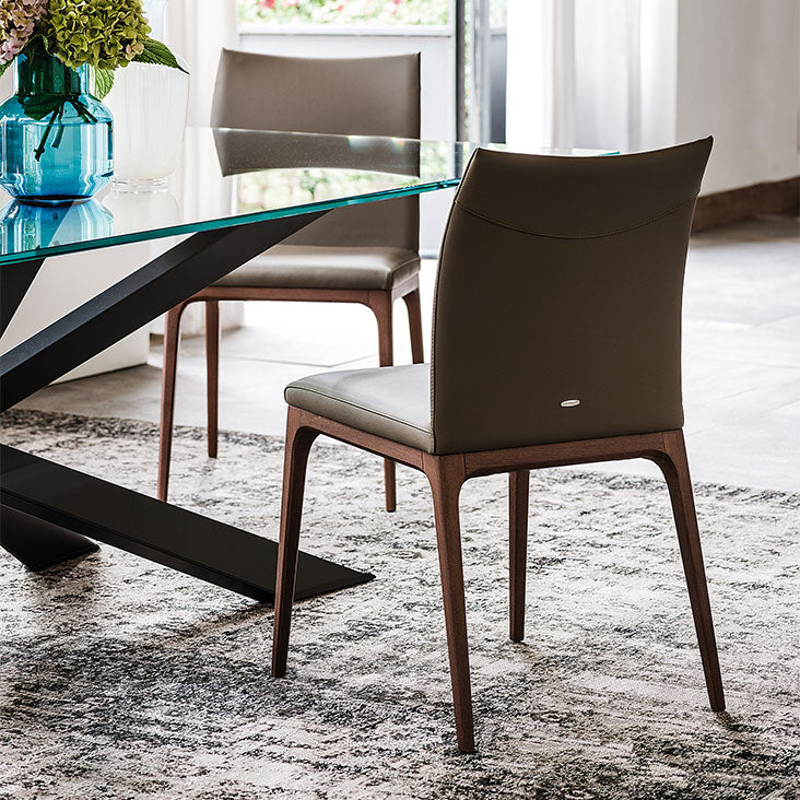 Back view of shorter Cattelan designed Arcadia dining chair