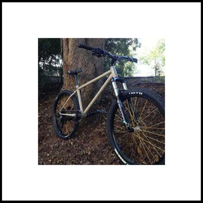 Pedal Driven Cycles Dirt Loop Mountain bike Frame
