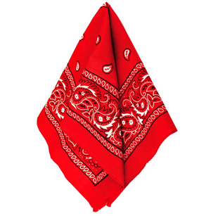 "THE ""Y2K CRYSTAL  BANDANA"""