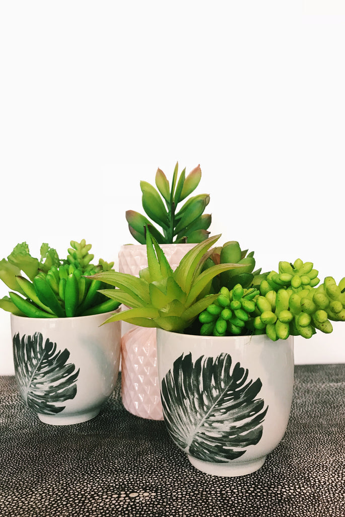 Mini faux succulents