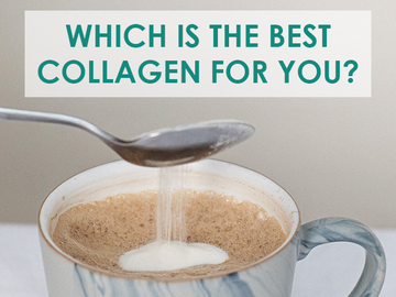 Bovine, Marine, and Vegan Collagen - Which is best?