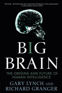 Big Brain: The Origins And Future Of Human Intelligence (Macsci)