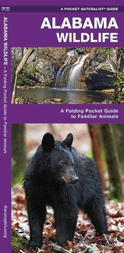 Alabama Wildlife: A Folding Pocket Guide To Familiar Animals (A Pocket Naturalist Guide)