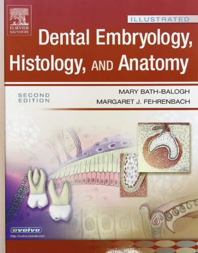 Illustrated Dental Embryology, Histology, And Anatomy 2E And Illustrated Anatomy Of The Head And Neck 3E Package, 2E