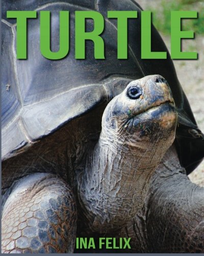 Turtle: Children Book Of Fun Facts & Amazing Photos On Animals In Nature - A Wonderful Turtle Book For Kids Aged 3-7