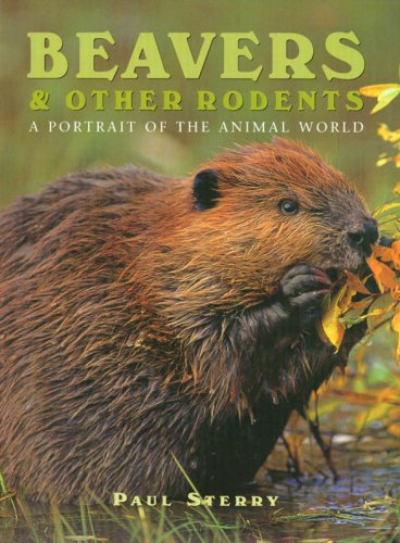 Beavers & Other Rodents (Portrait Of The Animal World)