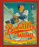 Barbed Wire Baseball: How One Man Brought Hope To The Japanese Internment Camps Of Wwii