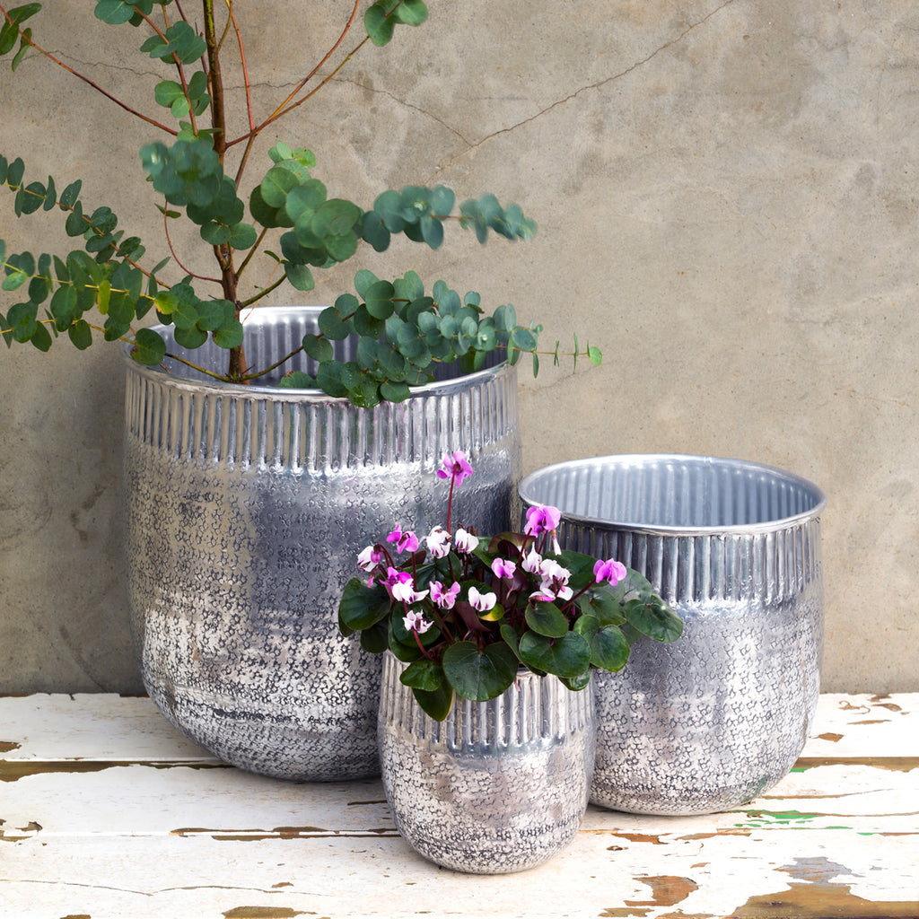 Reha Antique Silver Planters (Set of 3)