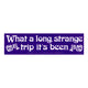 Grateful Dead What a Long Strange Trip Bumper Sticker