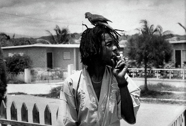 Peter Tosh Burning A Spliff In His Front Yard With His Parrot Freddie - Art Print