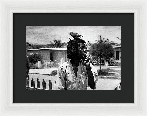 Peter Tosh Burning A Spliff In His Front Yard With His Parrot Freddie - Framed Print