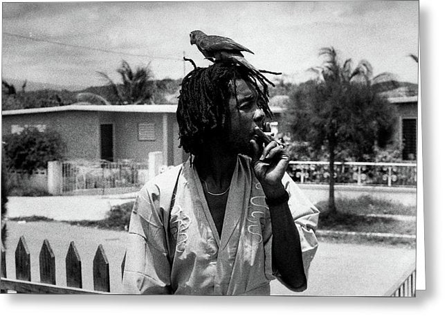 Peter Tosh Burning A Spliff In His Front Yard With His Parrot Freddie - Greeting Card