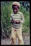 Young Boy In Jamaica- Art Print