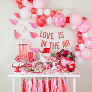 Valentine's Day Balloon Garland Kit
