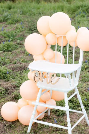 Blush Peach DIY Balloon Garland Kit