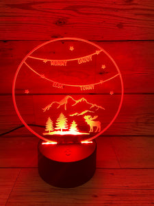 LED light up CHRISTMAS display ,9 Colour options with remote!