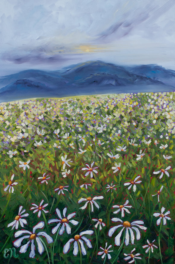 Daisy Field Daisies Painting Painting Canvas Print