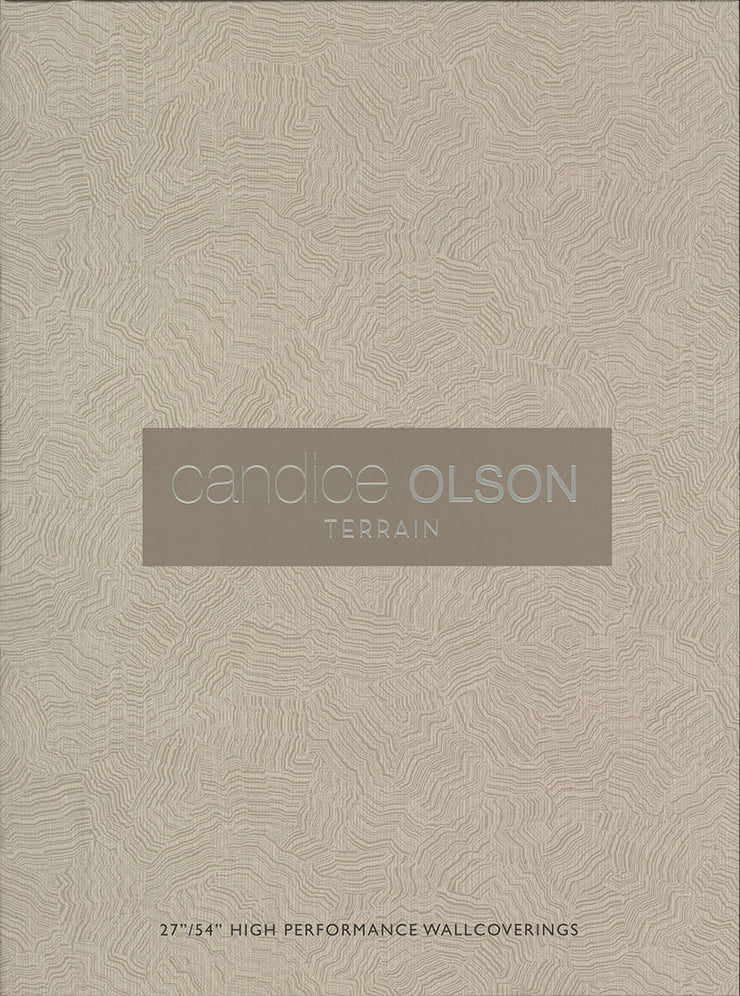 Pampas Wallpaper by Candice Olson - Gray