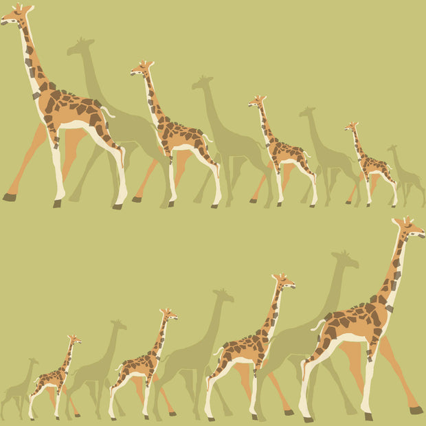 DW2364 DwellStudio Baby & Kids Giraffe Wallpaper Green