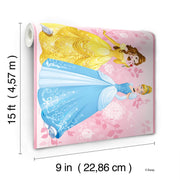 DY0334BD Disney Kids III Princess Wall Border Pink