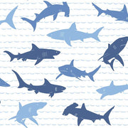 Shark Charades Wallpaper - SAMPLE ONLY