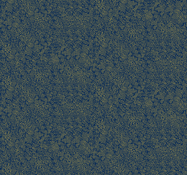 Rifle Paper Co. Champagne Dots Wallpaper - Gold & Navy