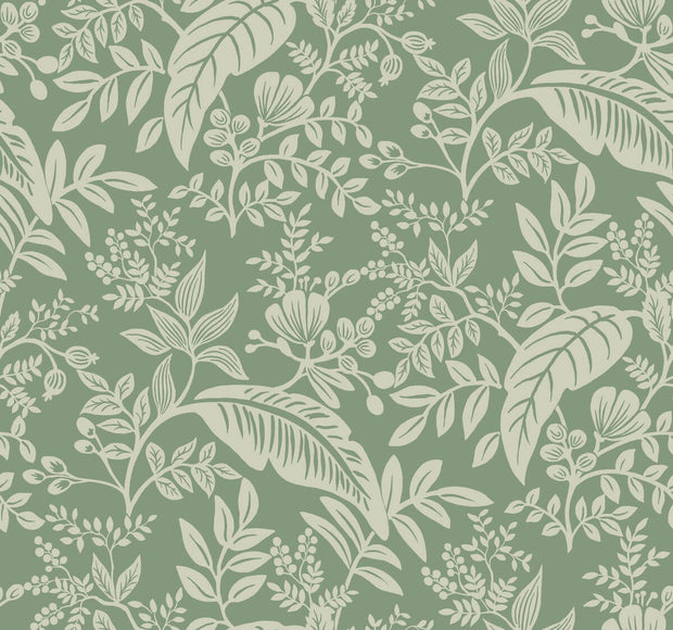 Rifle Paper Co. Canopy Wallpaper - Sage Green