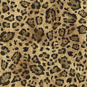 RK4459 Urban Chic Jungle Chic Tiger Wallpaper Orange Black