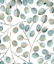 CatCoq Eucalyptus Peel and Stick Wallpaper - SAMPLE ONLY