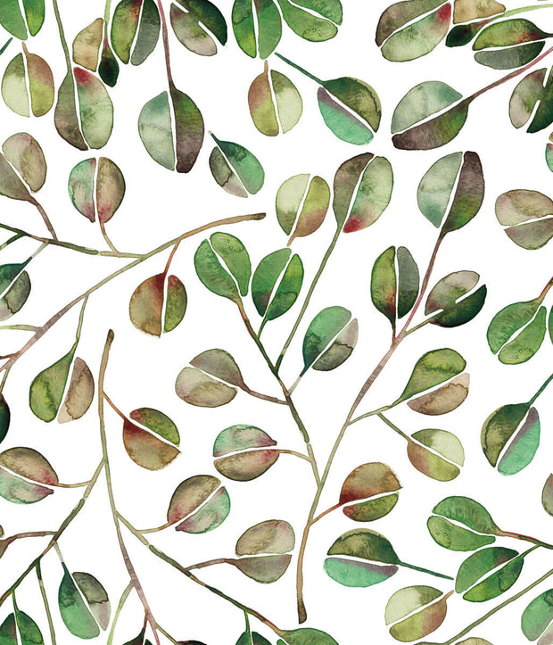CatCoq Eucalyptus Peel and Stick Wallpaper - Green