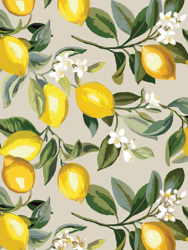 Lemon Zest Peel and Stick Wallpaper - Beige