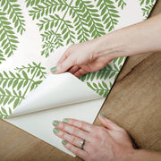 Hygge Fern Damask Peel and Stick Wallpaper - Green & White